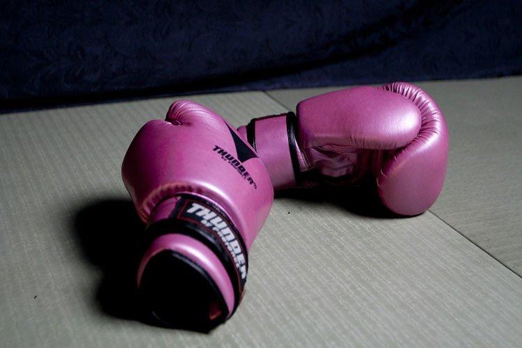secher gants de boxe