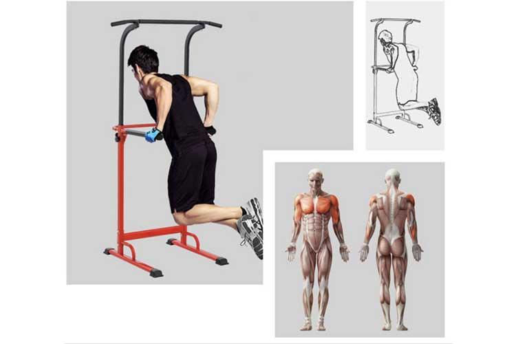 Pullup Fitness Station musculation test
