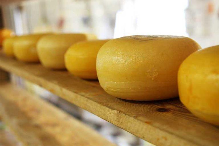 combien de protéine dans les fromages