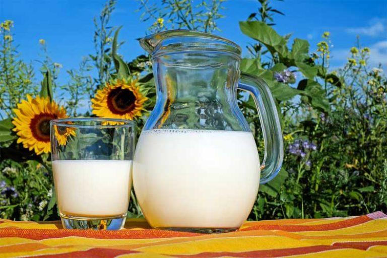 combien de protéine dans le lait