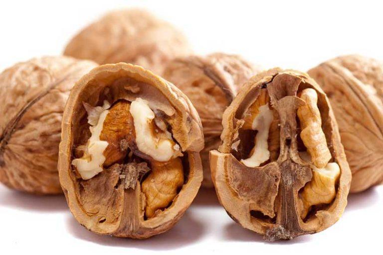 combien de protéine dans les noix