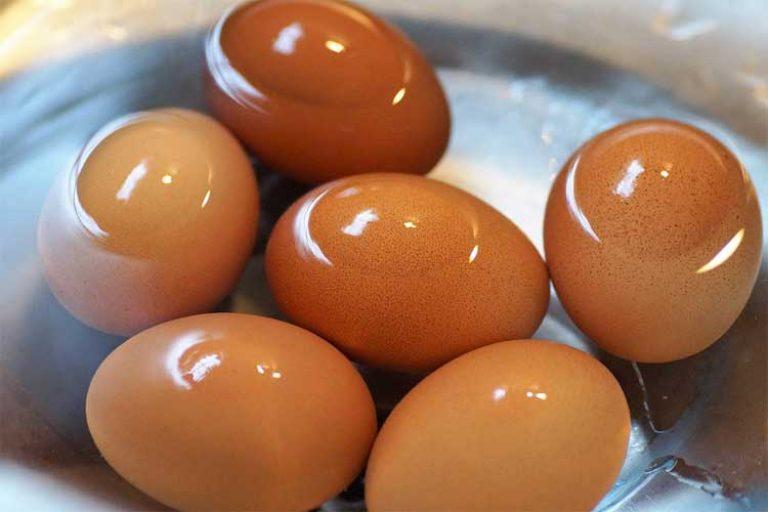 combien de protéine dans les œufs durs