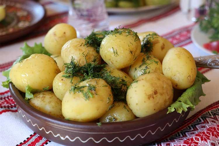 combien de protéine dans les pommes de terre