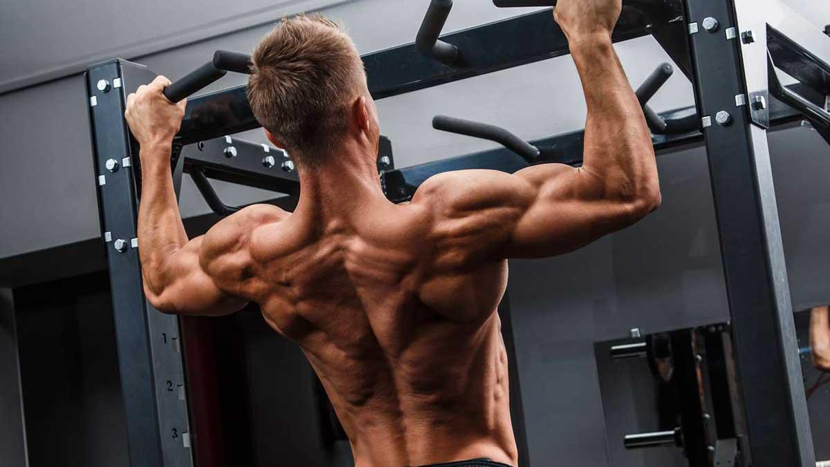 Comment Integrer Le Vtt Dans Ses Entrainements Fitness Ou Musculation