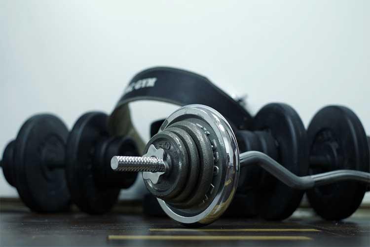 Avoir Pectoraux Muscles